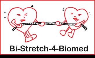 logo bi-stretch