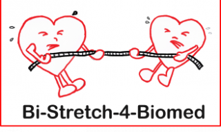 logo bi-stretch